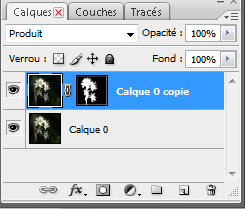 Duplication du calque plus masque vectoriel Photoshop