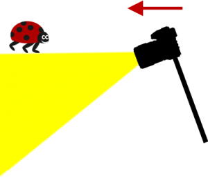 Monté rigide sur votre monopode, votre appareil photo pique du nez en avançant.